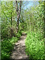 Here a path leads downhill from Old Malden Lane to the River Hogsmill near Six Acre Meadow. 