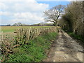 TQ6612 : 1066 Country Walk North of Boreham Street by Chris Heaton