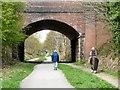 SJ9594 : Horse approaching Dowson Road bridge : Week 18
