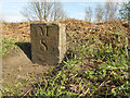 SD7506 : Milestone 8, Manchester, Bolton and Bury Canal by David Dixon