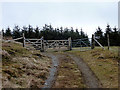 SN7678 : Boundary between Tymawr farm and the forestry on Llechwedd Mawr by John Lucas