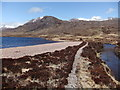 NH0569 : The beach, Lochan Fada by David Brown