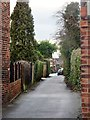 TA1132 : Lime Tree Avenue, Sutton on Hull, Yorkshire by Bernard Sharp