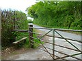SU9387 : Footpath reaches Green Common Lane by Shazz