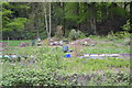 SK3192 : Allotment and Bee Hives, Langsett Road South, Oughtibridge, Sheffield - 2 by Terry Robinson