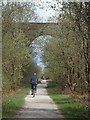 SK1657 : High bridge over the Tissington Trail by Andrew Hill