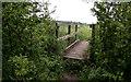 TL6047 : Footbridge over Stream by Kim Fyson