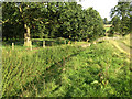 SE2812 : Ha-ha, Longside, Yorkshire Sculpture Park by Robin Stott