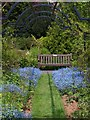 SX9265 : Rose pergola, Tessier Gardens : Week 21