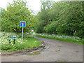 TL5384 : Beild Drove near Little Downham by Richard Humphrey