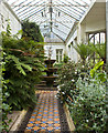 SJ9682 : The orangery at Lyme Park by Ian Greig