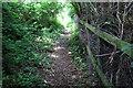 SP9840 : Footpath towards Morteyne Farm by Philip Jeffrey