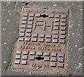 "J3371 : Peter Savage ""AMP"" fire hydrant cover, Belfast by Albert Bridge"