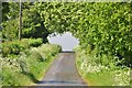 ST5163 : Bath and North East Somerset : Long Lane by Lewis Clarke