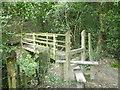 TQ5235 : Footbridge near Rock's Wood by David Anstiss