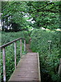 TL0232 : Footbridge over the Flit by Philip Jeffrey
