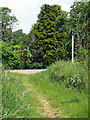 TL0736 : Bridleway meets the Ampthill Road by Philip Jeffrey