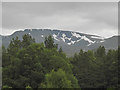 NH9802 : Cairn Lochan seen from Glenmore : Week 26