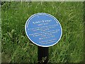 Photo of Amelia Earhart blue plaque