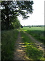 SP7225 : Bernwood Jubilee Way going down to Middle Claydon by Philip Jeffrey