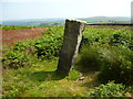SE1342 : Bingley Moor: Boundary Stone by Dr Neil Clifton