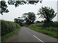 SJ5447 : Minor road, near junction with the A49 by David Weston