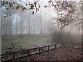 SP9713 : A Misty December day at Clickmere Pond, Ashridge (2010) by Chris Reynolds