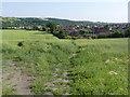 SE3801 : Footpath below Low Farm by Alan Murray-Rust
