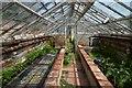 TG1728 : Blickling Hall - Walled kitchen garden : Week 28