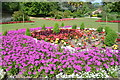 TQ8010 : Flowers in Alexandra Park by Peregrine