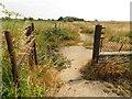 SP6410 : Bridleway alongside Oakley Airfield by Steve Daniels