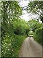 SX4263 : Lane approaching Tinnel by Derek Harper