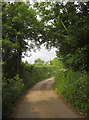 SX4163 : Lane to Tinnel Farm by Derek Harper