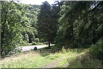 W6396 : Small layby and footpath by Hywel Williams