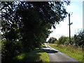 TF1607 : Mile Drove near Peakirk by Paul Bryan