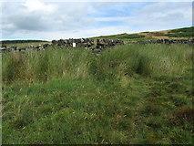 SE0844 : Approaching a Stile on High Bradup by Chris Heaton
