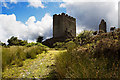 SH7252 : Dolwyddelan Castle (3) by Mike Searle