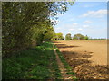 TF1507 : Footpath between Mile Drove and Northborough by Paul Bryan