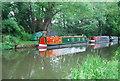 TQ0557 : Narrowboats, Wey Navigation by N Chadwick