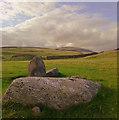 SD1481 : Part of stone circle, Kirksanton : Week 34