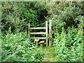 SJ1177 : Stile into Glol woodland by Maggie Cox