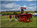 TL2901 : Shire Horses, Cuffley Steam and Heavy Horse Fair by Christine Matthews