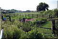 SP9946 : A fenced garden at the end of Keeley Lane by Philip Jeffrey