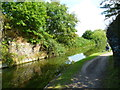 TQ0280 : Orange Way after Wiltshire (484) by Shazz