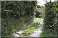 SW3926 : Lane to Rospannel by Elizabeth Scott