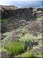SK2184 : Disused stone quarry on Bamford Moor : Week 37