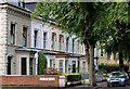 J3774 : Carlton Gardens, Belfast : Week 37