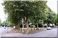SK5359 : Mansfield, Notts. by David Hallam-Jones