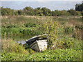TL4871 : Derelict Boat off River Great Ouse by Kim Fyson