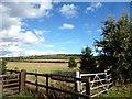 SU6993 : Springfield Farm Gate by Des Blenkinsopp